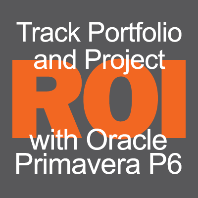 Track Portfolio and Project ROI with Primavera P6